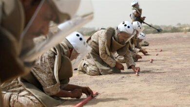 صورة مركز يمني: ألغام الحوثيين تقتل وتصيب 101 في النصف الأول من العام
