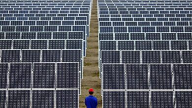صورة الطاقة الشمسية في السعودية.. 23 مصنعاً لدعم سلاسل إمداد الطاقة المتجددة