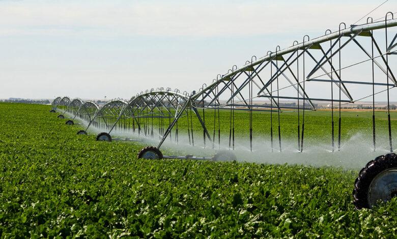 المملكة العربية السعودية تعلن عن تأسيس معهد التكنولوجيا الزراعية لأول مرة